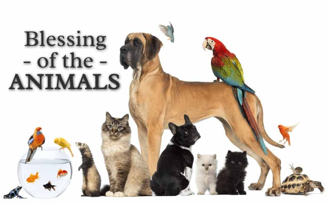 Inaugural Blessing of Pets/Animals on Oct 6 at 5:30