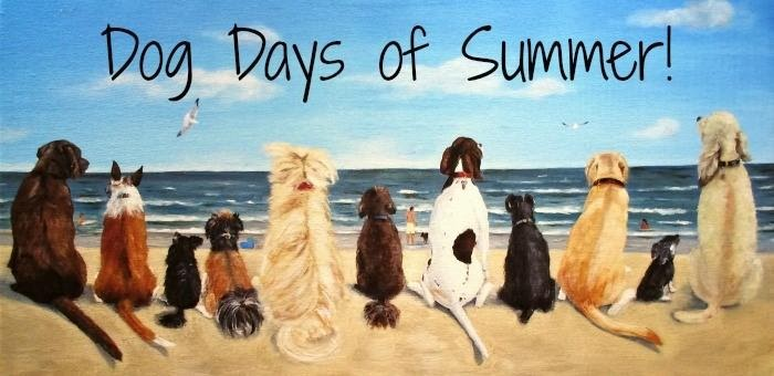Thriving In the Dog Days of Summer