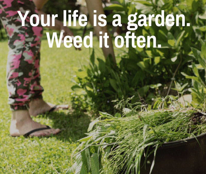 The Weeds of Convenience